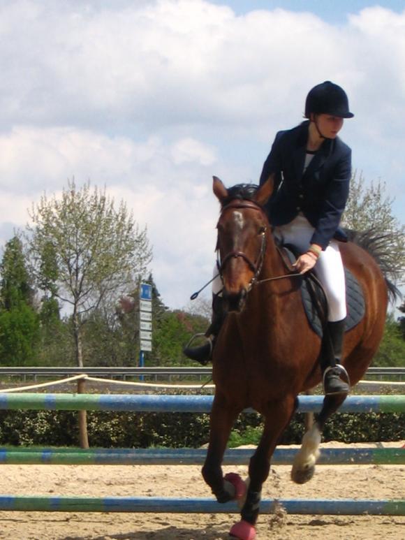 http://cheval-par-max.cowblog.fr/images/2/1225649.jpg
