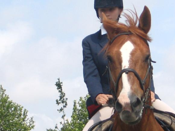 http://cheval-par-max.cowblog.fr/images/3/3128780.jpg