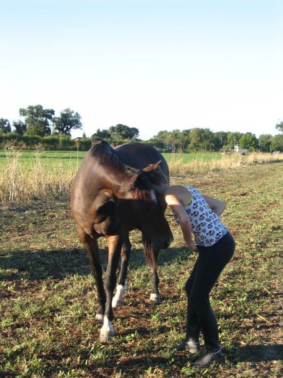 http://cheval-par-max.cowblog.fr/images/4/4186171.jpg