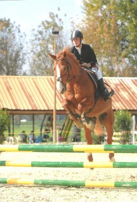 http://cheval-par-max.cowblog.fr/images/5/4511989.jpg