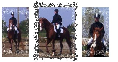 http://cheval-par-max.cowblog.fr/images/5/4529060.jpg