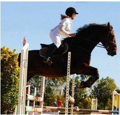 http://cheval-par-max.cowblog.fr/images/5/4529720.jpg