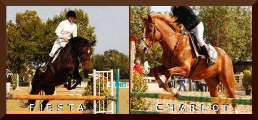 http://cheval-par-max.cowblog.fr/images/5/4536531.jpg