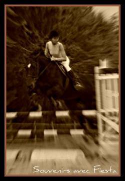 http://cheval-par-max.cowblog.fr/images/5/4541335.jpg