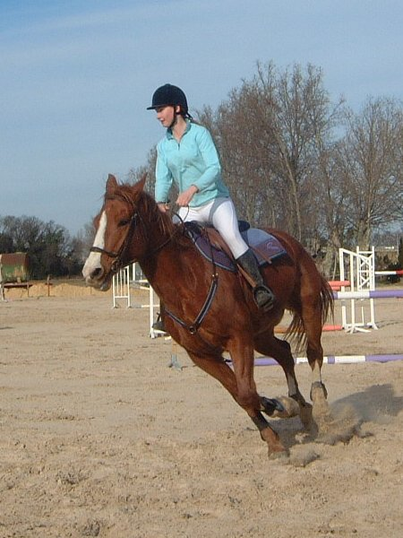 http://cheval-par-max.cowblog.fr/images/6/charlot03.jpg