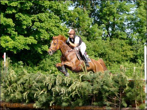 http://cheval-par-max.cowblog.fr/images/6/manon03-copie-1.jpg