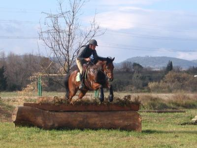 http://cheval-par-max.cowblog.fr/images/6/neptune.jpg
