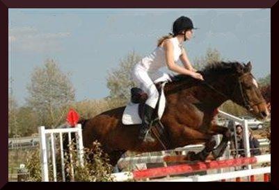 http://cheval-par-max.cowblog.fr/images/6/photo4.jpg