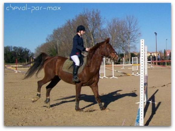 http://cheval-par-max.cowblog.fr/images/7/100E2337.jpg