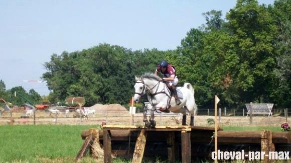 http://cheval-par-max.cowblog.fr/images/7/479311572128586221476756701303876135724881n.jpg