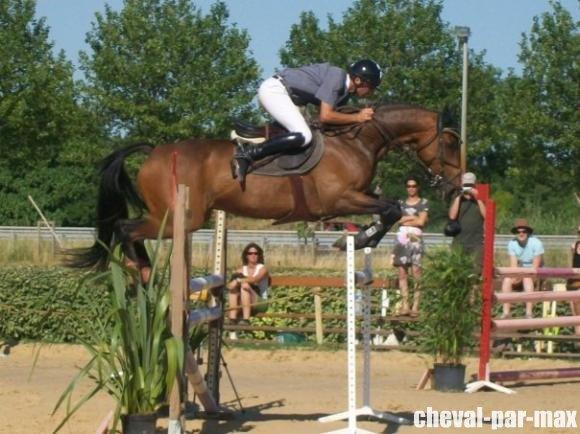 http://cheval-par-max.cowblog.fr/images/7/479311572237788951476756701303876291217476n.jpg