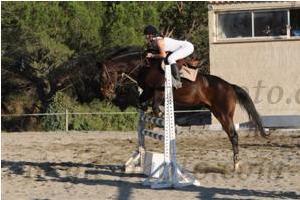 http://cheval-par-max.cowblog.fr/images/7/CapturePhotoMozillaFirefox20.png
