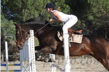 http://cheval-par-max.cowblog.fr/images/7/CapturePhotoMozillaFirefox4.png