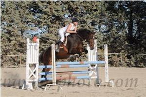 http://cheval-par-max.cowblog.fr/images/7/CapturePhotoMozillaFirefox5.png