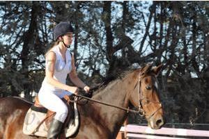 http://cheval-par-max.cowblog.fr/images/7/CapturePhotoMozillaFirefox6.png