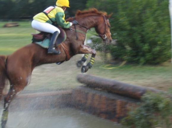 http://cheval-par-max.cowblog.fr/images/7/Idole02.jpg
