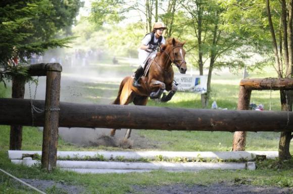 http://cheval-par-max.cowblog.fr/images/7/Idole05.jpg