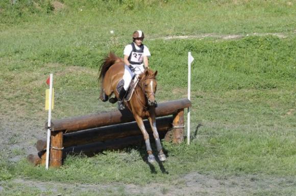 http://cheval-par-max.cowblog.fr/images/7/Idole06.jpg