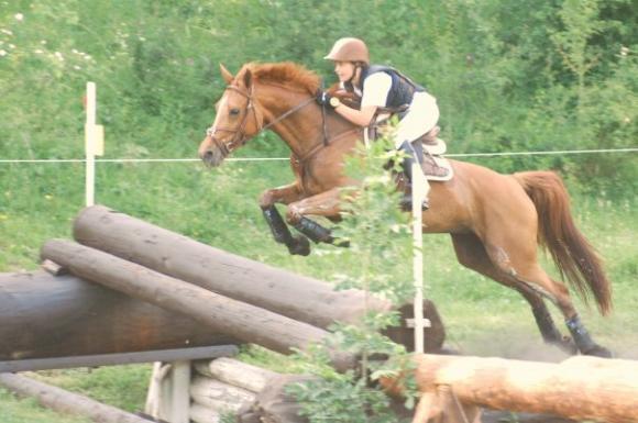 http://cheval-par-max.cowblog.fr/images/7/Idole07.jpg