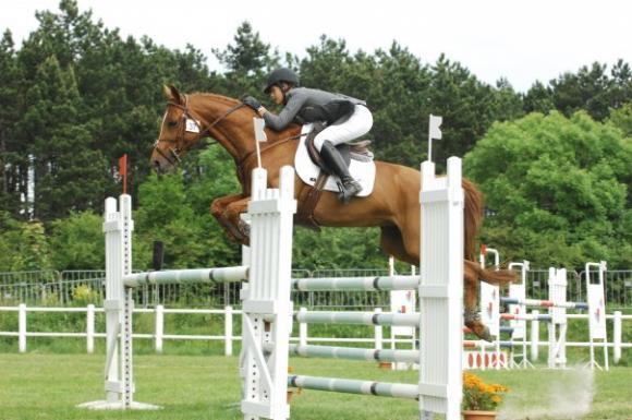http://cheval-par-max.cowblog.fr/images/7/Idole09.jpg