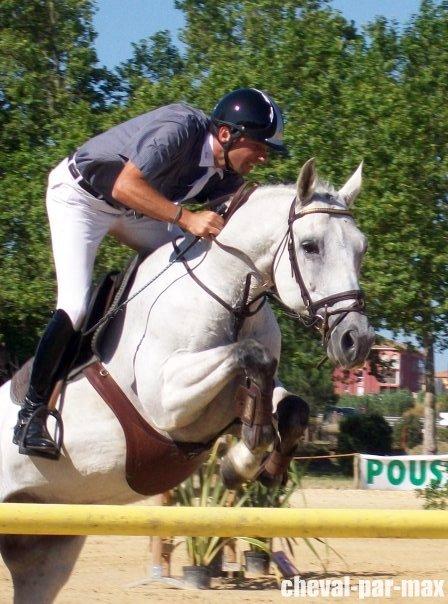 http://cheval-par-max.cowblog.fr/images/7/aeffacer01.jpg