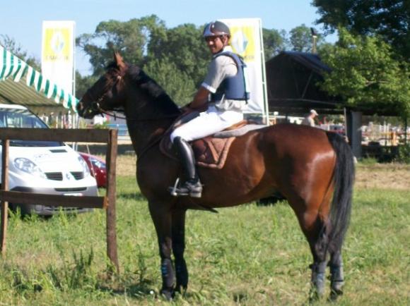 http://cheval-par-max.cowblog.fr/images/7/aeffacer04.jpg