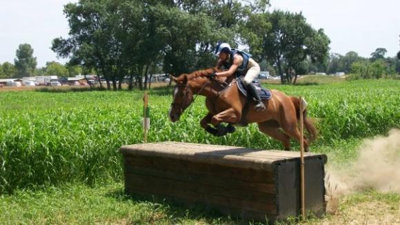 http://cheval-par-max.cowblog.fr/images/7/clo.jpg