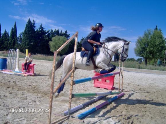 http://cheval-par-max.cowblog.fr/images/7/incognito.jpg