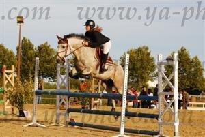 http://cheval-par-max.cowblog.fr/images/7/incognito2.jpg
