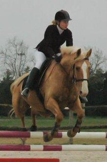 http://cheval-par-max.cowblog.fr/images/8/16661118176336087281476756701319968841170129n.jpg