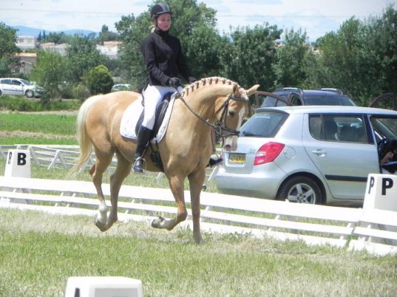 http://cheval-par-max.cowblog.fr/images/8/253627180159828704799100001323483053431605532335n.jpg