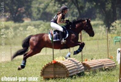 http://cheval-par-max.cowblog.fr/images/8/296741448474526165106225798713501995412673n.jpg