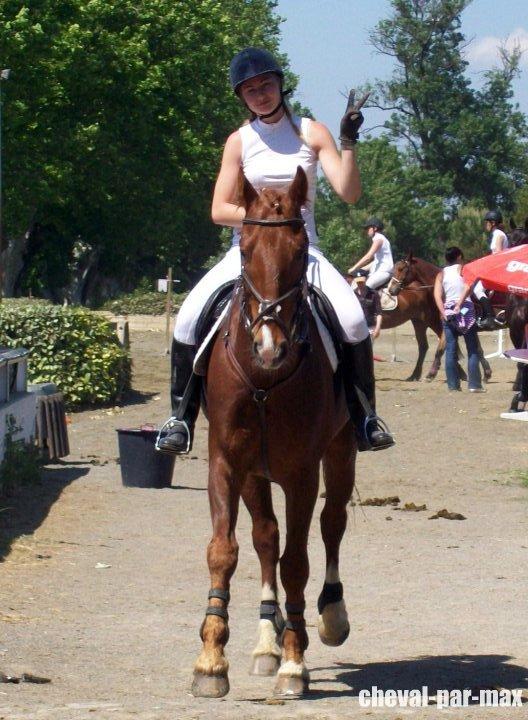 http://cheval-par-max.cowblog.fr/images/8/2988814710965055171476756701312029921258368n.jpg
