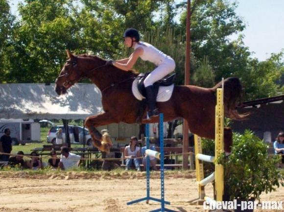 http://cheval-par-max.cowblog.fr/images/8/2988814710966255201476756701312029954732978n.jpg
