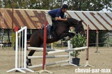 http://cheval-par-max.cowblog.fr/images/8/449371517389667759162503183712136373578012n.jpg