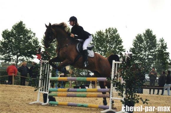 http://cheval-par-max.cowblog.fr/images/8/7378916627832175651476756701316897766567509n.jpg