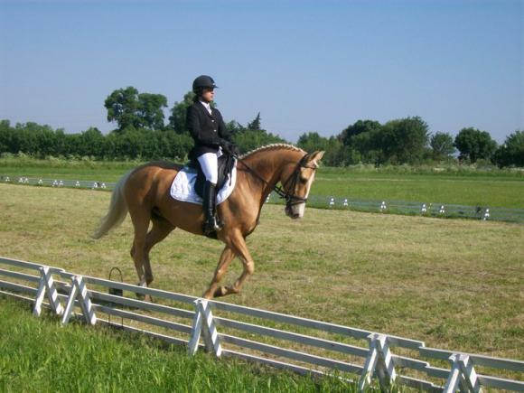 http://cheval-par-max.cowblog.fr/images/8/Louxor02.jpg