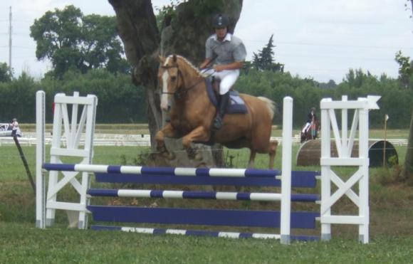 http://cheval-par-max.cowblog.fr/images/8/Louxor04.jpg