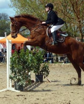 http://cheval-par-max.cowblog.fr/images/8/hansie02.jpg