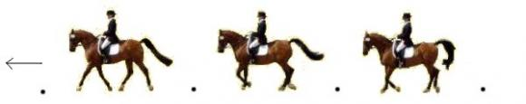 http://cheval-par-max.cowblog.fr/images/Exercicesdressage/exodressage9.jpg
