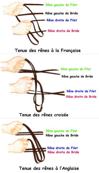 http://cheval-par-max.cowblog.fr/images/articles/bride.jpg