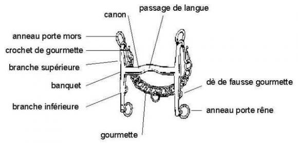 http://cheval-par-max.cowblog.fr/images/articles/bride2.jpg