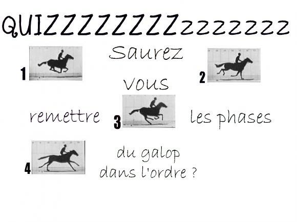 http://cheval-par-max.cowblog.fr/images/divers/aeffacer01.jpg